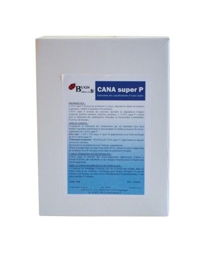 CANA SUPER P Traitement concentré pour canalisations