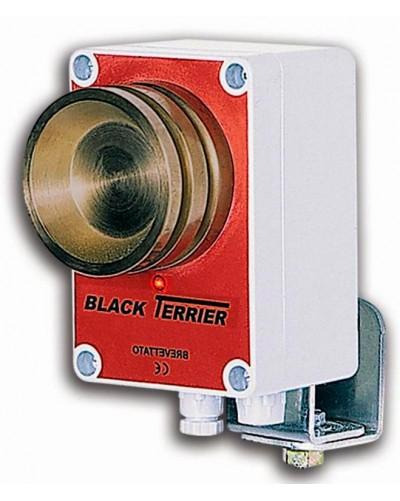 BLACK TERRIER POUR CONNECTION AVEC BT16