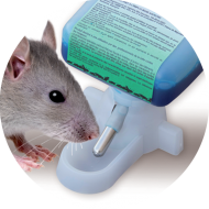 Raticide liquide