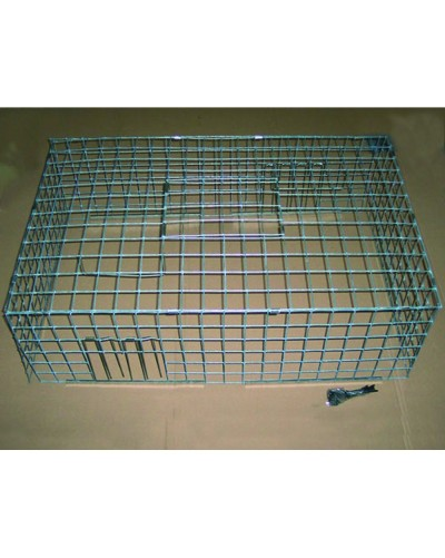 CAGE A PIGEON PLIABLE MK4 2 ENTREES 100 x 60 x 30