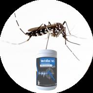 Insecticide moustiques