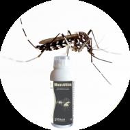 Piégeage et monitoring moustiques