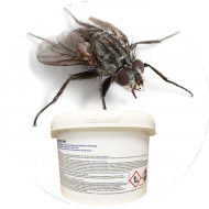 Insecticides mouches