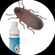Insecticides insectes denrées stockées