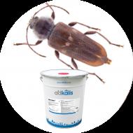 Insecticides insectes du bois